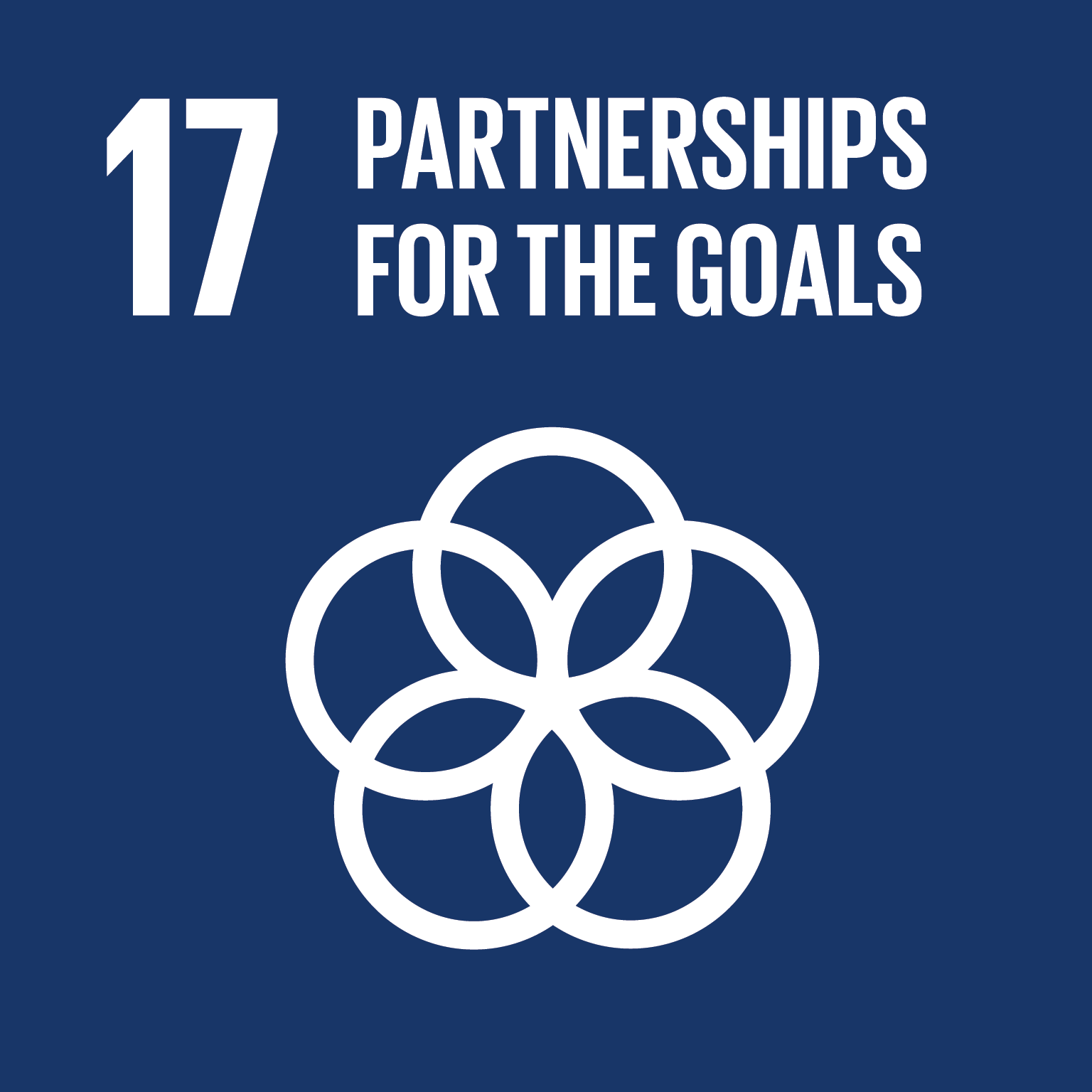 Partnerships For the Goals - Revitalize the global partnership for sustainable development